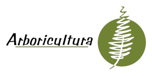 arboricultura-ciencia-cuidado-arboles
